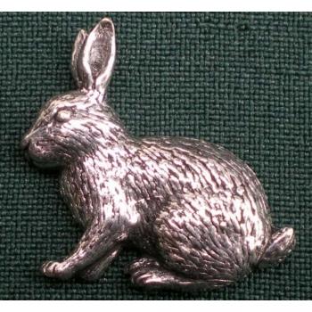 A17 bunny