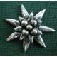 C21 Edelweiss klein