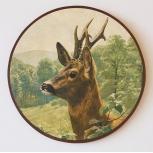 Sniperdisc - roe buck