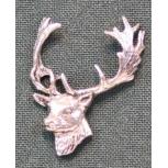 A63 fallow deer head