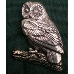 B3 owl