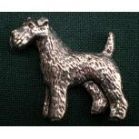 D21 Fox Terrier