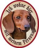Bannerdackel Hund +