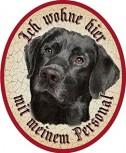 Hund 39 Labrador schwarz +