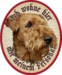 Hund 48 Airedale Terrier +