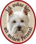 Hund 37 West Highland Terrier +