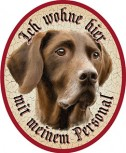 Deutsch Kurzhaar Hund +