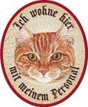 Katze rot +
