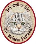 Katze Tiger Langhaar +